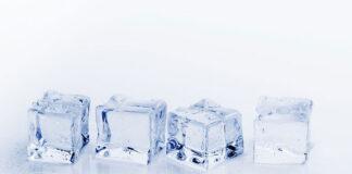 5 kostkarek do lodu dla gastronomii