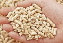 mity o pellecie